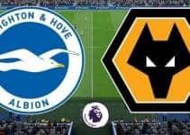 Soi kèo nhà cái Brighton & Hove Albion vs Wolverhampton, 8/12/2019 - Ngoại Hạng Anh