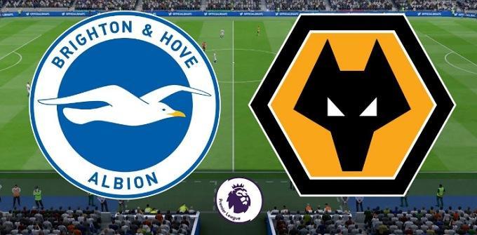 Soi keo nha cai Brighton & Hove Albion vs Wolverhampton, 8/12/2019 - Ngoai Hang Anh